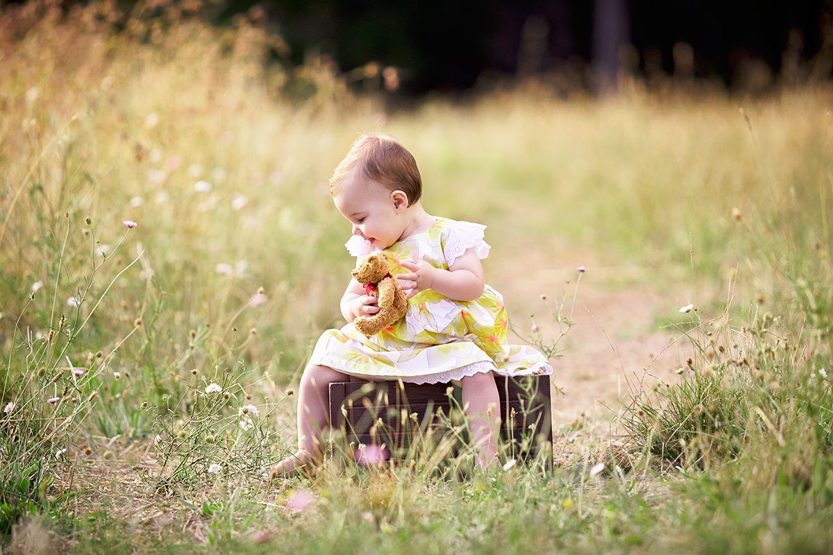 toddler+field+teddy child portraits in adelaide forest by deb elton photography